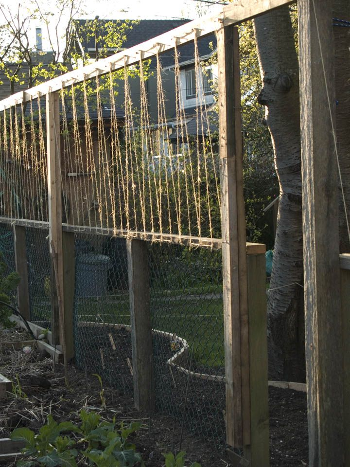 Wire Garden Fencing Ideas Bing Images Diy Garden Fence