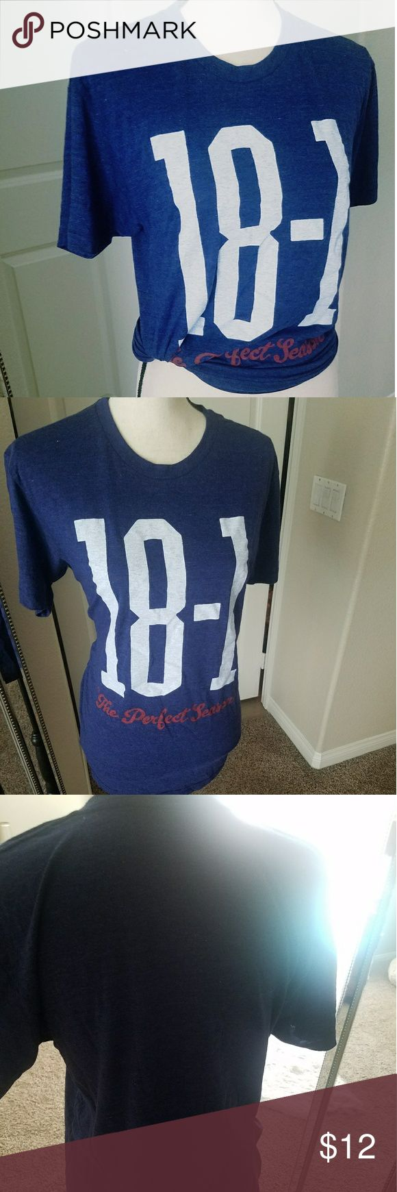 Tom Brady tee shirt 18-1 Tom Brady tee shirt.  Size medium but fits closer to a large. Brand new, never worn. American Apparel Tops Tees - Short Sleeve