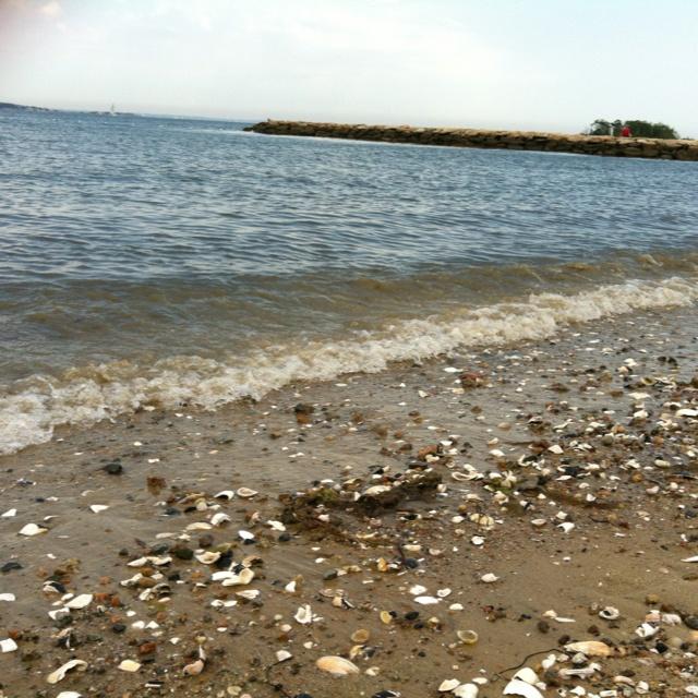 Shellfishing Cape Cod: 24 Best Marion Massachusetts Images On Pinterest