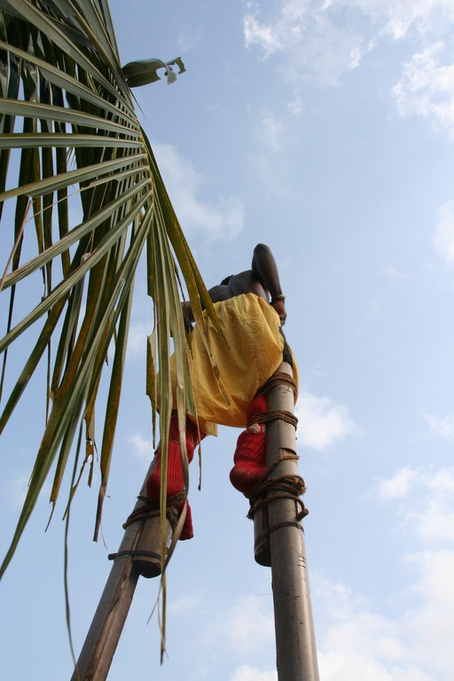 Spactacular Benin