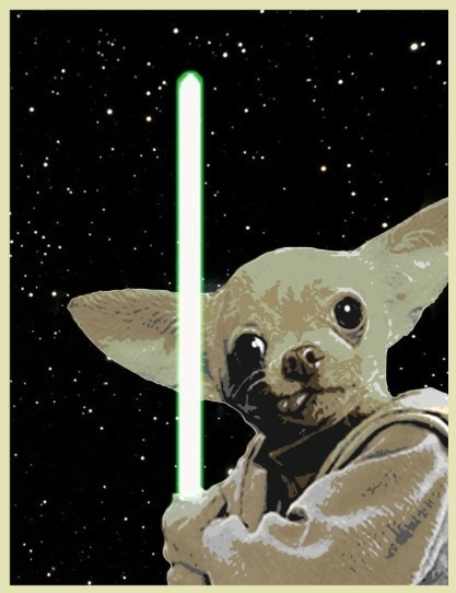 Chihuahua Yoda: Dogs Animal, Animal Chihuahua, Yoda Chihuahua, Chihuahua Yoda, Stars War Art, Artists Unknown, Dogs Halloween Costumes, Yoda Dogs, Digital Prints