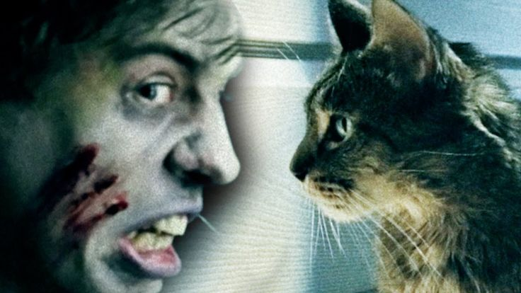 Couple Finds Out the Importance of Feeding Their Cat the Right Kind of Food During a Zombie Apocalypse