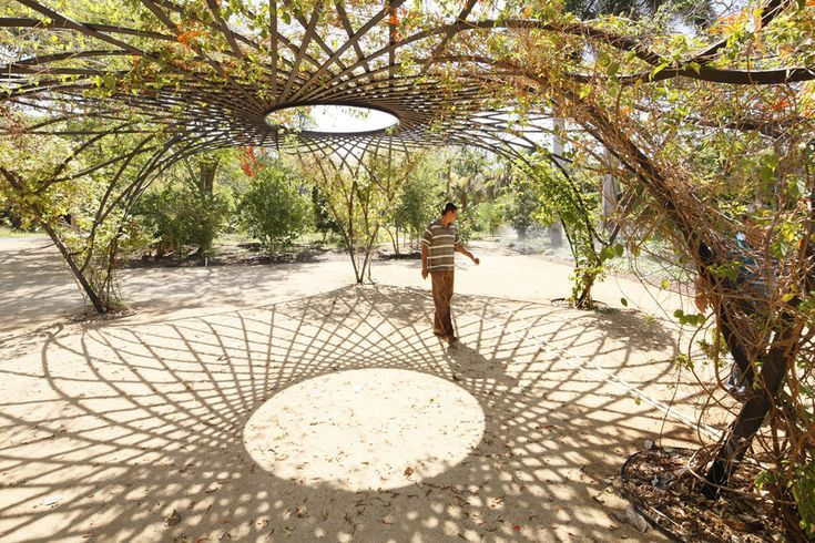 Culiácan's Jardín Botánico is currently being revitalized to incorporate contemporary art and to embrace environmentally sustainable practices.
