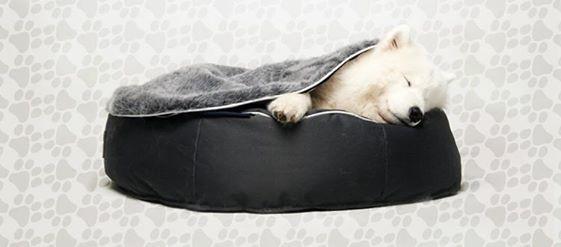 Que duerma tranquilo. http://www.eurekamuebles.com.mx/sofa-camas/puffs/pet-puff-cama-para-perro.html #Pet #Puff #Mascota #Cama #Perro