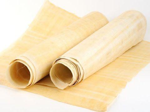 Dalla pianta al foglio di papiro