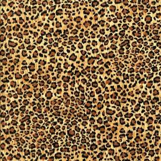 Cheetah Cheetah CheetahAnimales Leopards Prints, Animal Leopards Prints, Animal Pictures, Dips Leopards, Animal Prints, Things, Leopards Cheetahs Prints, Leopard Prints, Animal Photos
