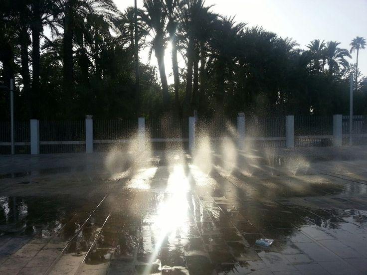 Parque Municipal de Elche, Pedro Palazon Yepes.