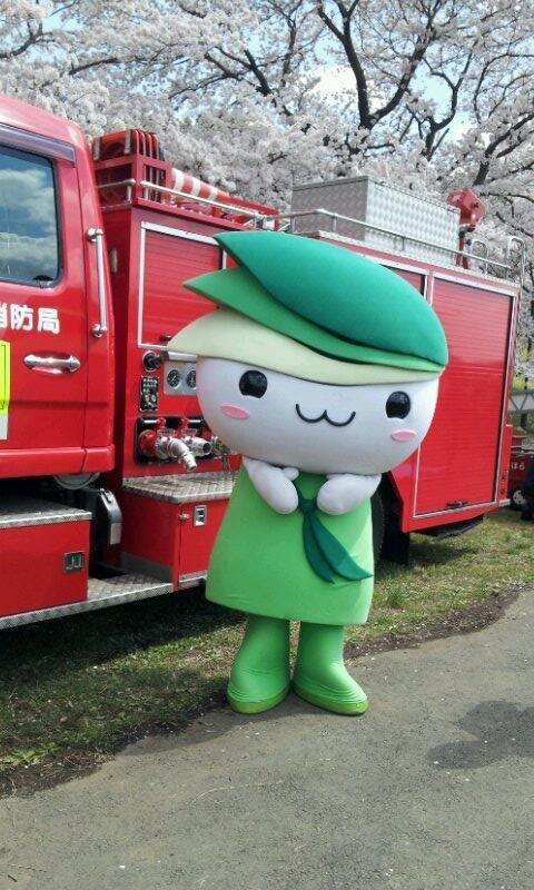 おおさわ桜まつりに行ってきたよ♪満開の桜の中、「働く自動車コーナー」で消防自動車とパチリ! pic.twitter.com/bWXIxsJsXr