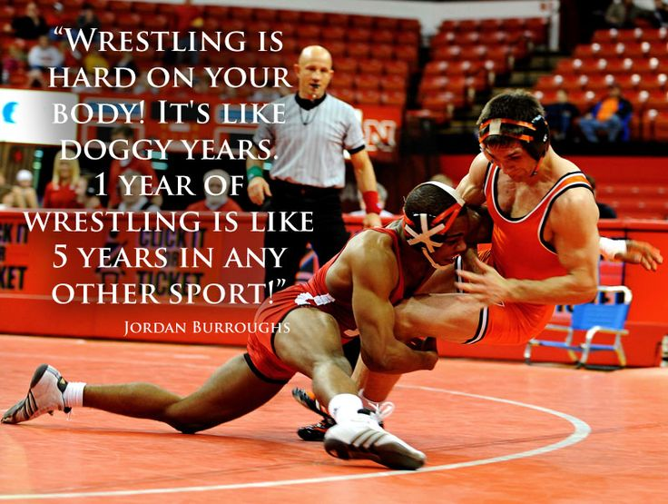 Need an Essay about Highschool Wrestling ?