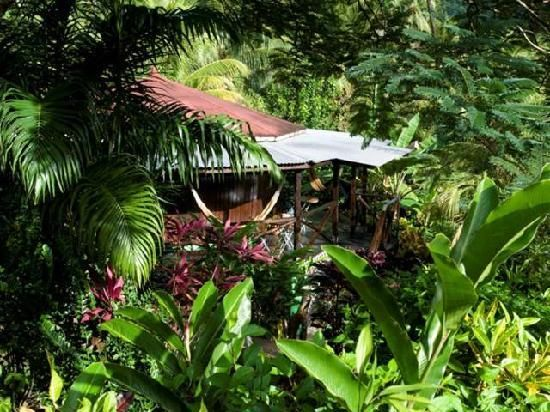 55 best Dominica GPS Map Travel Guide images on Pinterest