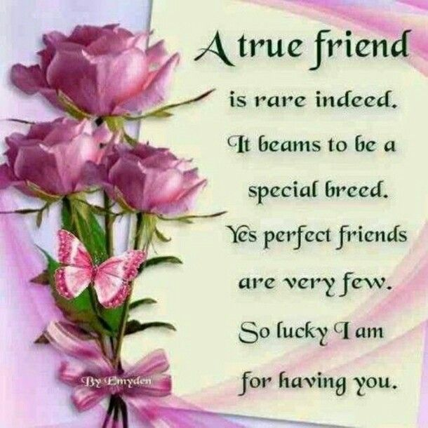 You Are Such A Beautiful And Treasured Friend Sis To Me With My Love Warm Hugs Prayers Always