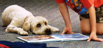 Children will read to canine therapy companions this Saturday in Forest Park | News | Forest Park Review