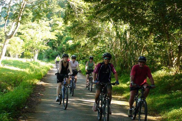Tour xe đạp trong rừng Cúc Phương