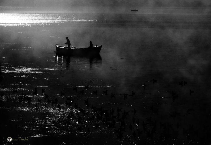 #MURATFINDIK #photographer #photography #fujifilm #muratfindik #murat33 #canonmurat #muratphotographer #canon #hs20 #450d #7D #place  #photo #photos #pic #pics #mersin_picture #mersin_photographer #pictures #snapshot #art #beautiful #instagood  #picoftheday #photooftheday #color #all_shots #exposure #composition #focus  #capture #moment #photoshoot #photodaily #photogram #abstract #art #abstractart #abstracters_anonymous #abstract_buff  #portrait #portraits #portraiture