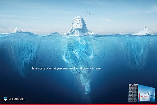 Polarkrill Branding Campaign by Good Evening , via Behance
