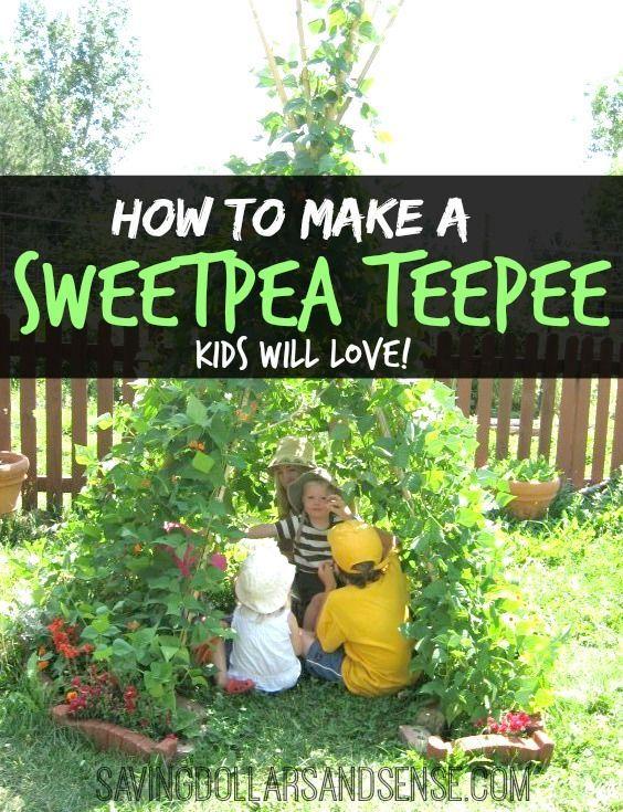 Delightful How To Make A Sweetpea TeePee