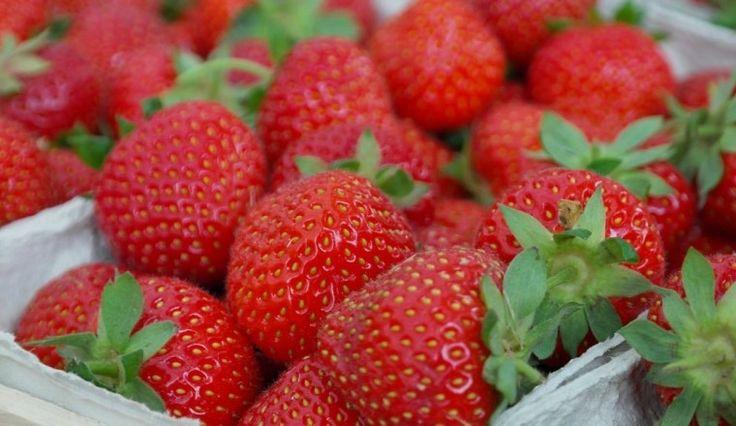 Bu Akıllı Etiket, Yiyecekleriniz Bozulmaya Başladığında Algılıyor