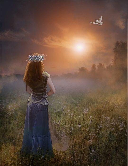 Фото Девушка с венком из цветов на голове стоит в поле и наблюдает за парящим голубем в небе