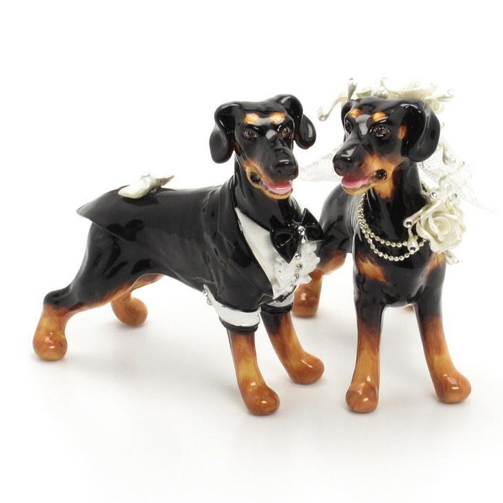 Cat And Dog Wedding