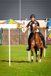 (New Waikato Show) Mounted Equestrian Games - This could be the most interesting part of the show. Don't miss out.
