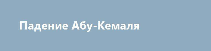 Падение Абу-Кемаля http://kleinburd.ru/news/padenie-abu-kemalya/