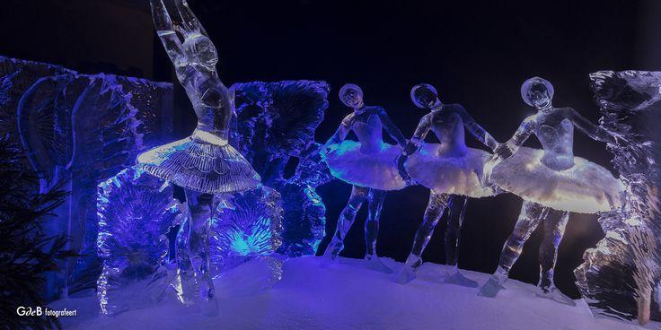 https://flic.kr/p/QmbUAJ | het Zwanenmeer on Ice