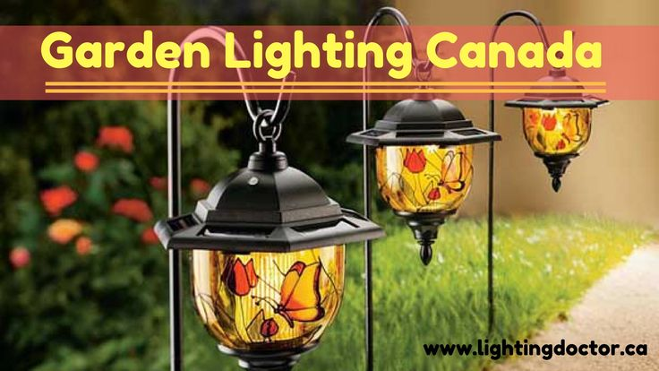 #Garden_Lighting are a great way to spice up the appearance of your garden. One way you can do this is through the use of color changing garden lights. For more garden lighting fixture go here:- http://www.lightingdoctor.ca/ #gardenlightingcanada #lightingdoctor #canada #calgary