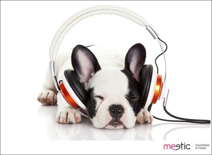#weekend #music #TGIF #buonweekend #buonfinesettimana #relax #dog #cane #venerdì #friday