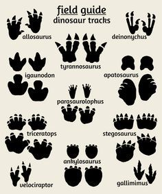 Dinosaur art print, footprints poster
