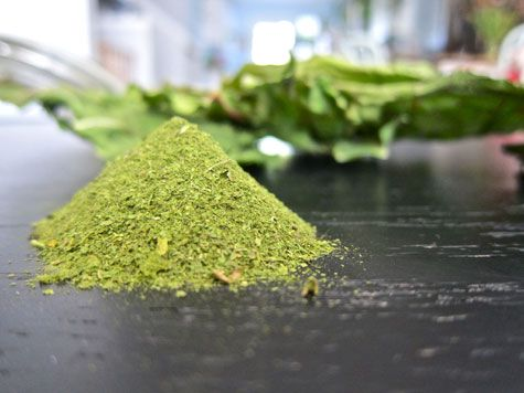 """So simple and SUCH a money saver!  At Whole Foods you can pay upwards of $50 for a small bag of """"super food"""" powders!  No joke!  I made my own organic spinach green powder today!  In the oven, bc I don't have a dehydrator.  Put the oven on """"warm"""" for about 2 hours and voila! Throw the crispy leaves into the food processor and I have my own green powder!  I can't wait to get more amazing leafy greens to add to my collection."""