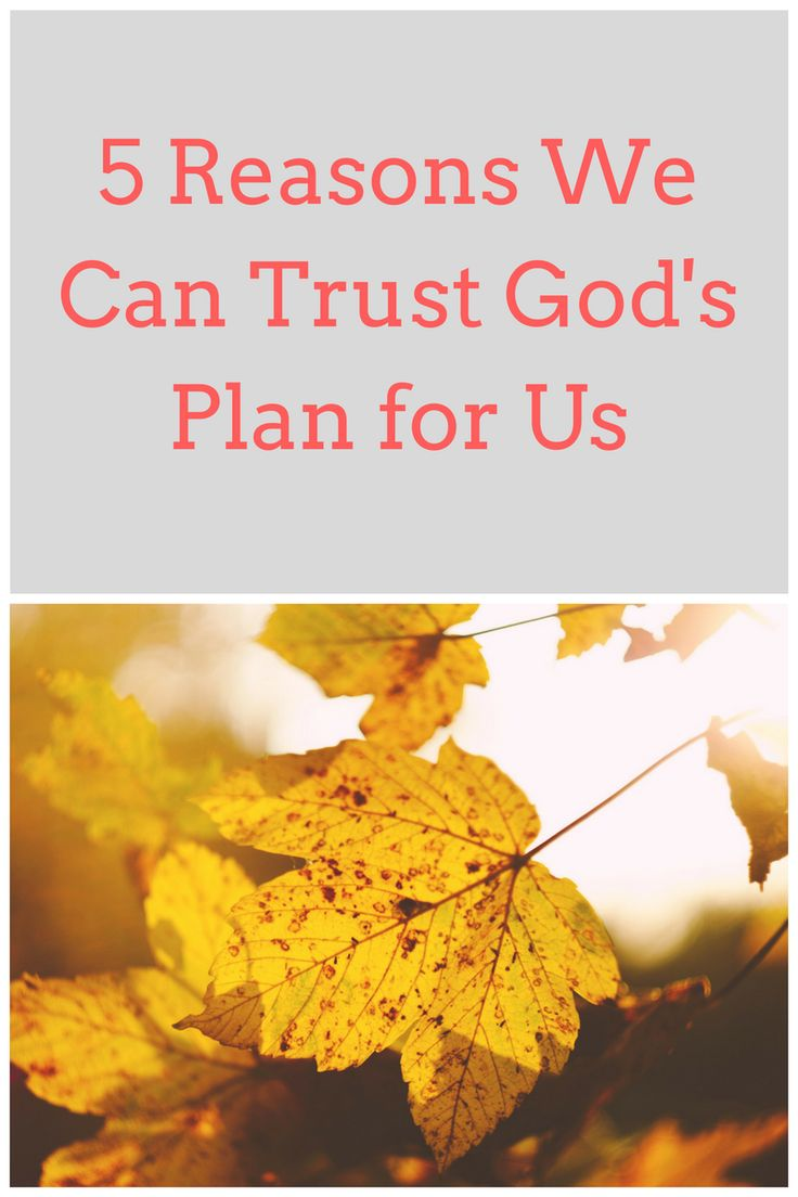 establishing trust in gods plan We also plan to run a reading  aristotle's ethics was particularly influential in establishing this tradition of 'virtue ethics  the gods of the.