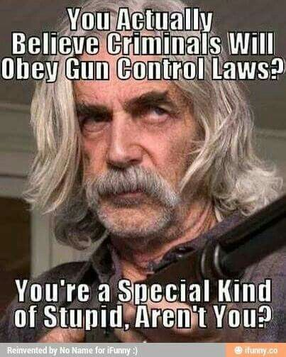 Do you actually think criminals will obey gun laws? ????