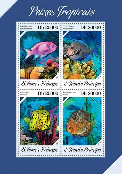 ST 13610 aTopical fishes, (Psedanthias pleurotaenia, Ctenochaetus hawaiiensis, Ostracion cubicus, Symphysodon discus).