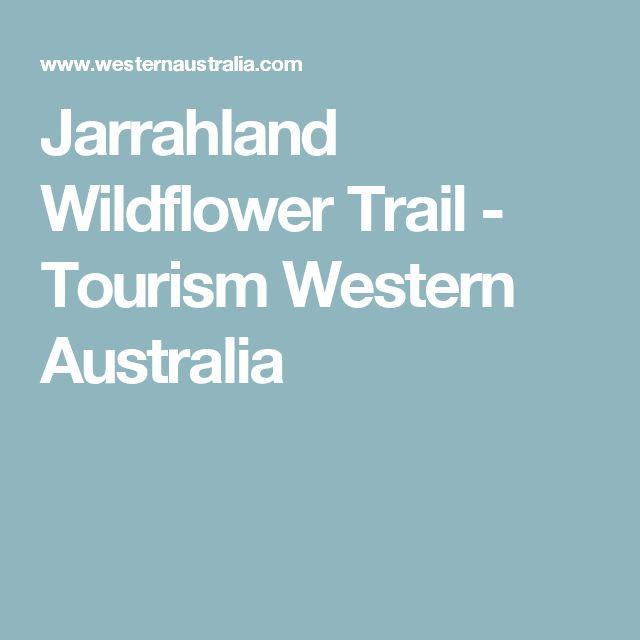 Jarrahland Wildflower Trail - Tourism Western Australia