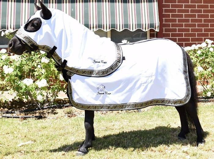 Mini Horses Miniature Horse Tack Stuff Rugs Carpet Carpets Saddles Rug
