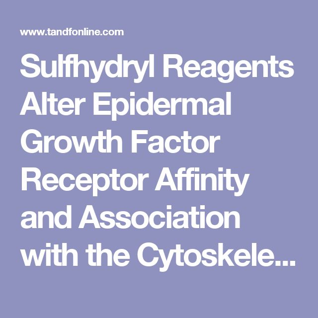 Sulfhydryl Reagents Alter Epidermal Growth Factor Receptor Affinity and Association with the Cytoskeleton: Journal of Receptor Research: Vol 11, No 6