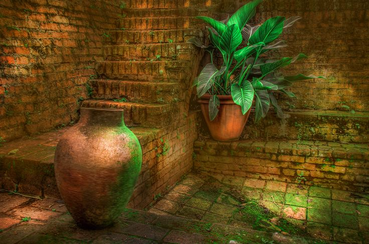 Playing with Lights and Shades     [ Still Life Vase HDR ]