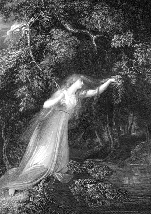 an analysis of the character of ophelia in hamlet a play by william shakespeare Character analysis of claudius from the play hamlet by shakespeare in the play, hamlet, shakespeare needed to devize an evil character, a villain that is ambitious, and has the ability to scheme to get what he wants.