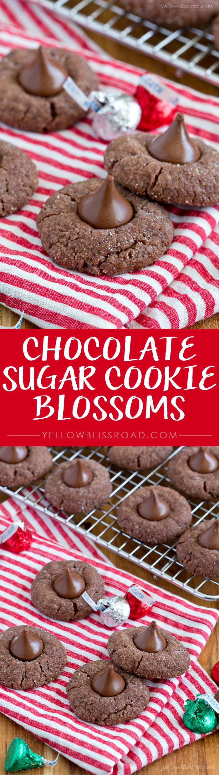 Chocolate Sugar Cookie Blossoms - a delicious Christmas cookie with just 6 easy ingredients!