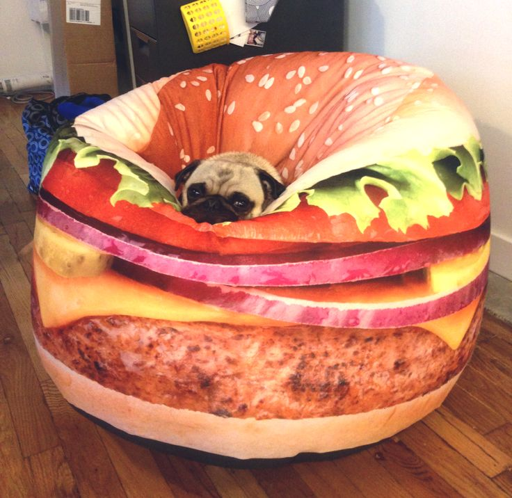 So DogGone Funny!: 16509 - Adorable Dog Bed -- Wonder if Any Dogs Have Tried to Eat It!   Pugs
