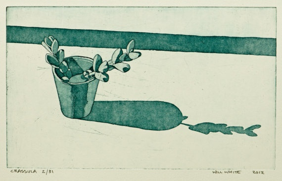 Crassula Pot Plant Etching Print by williamwhiteart on Etsy, $65.00