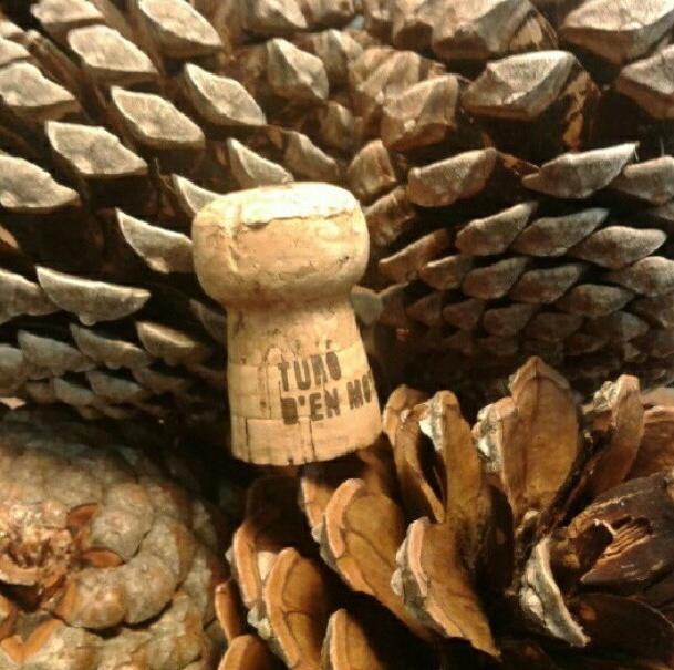 ORO - cristogalan: Caja de Cuvée de Freixenet + visita a sus instalaciones. #CorkNavidad #BrindisFreixenet