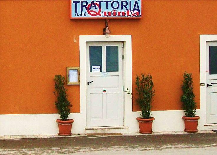 Trattoria dalla Quinta, Fano (Marche) 5 Favorite Places to Eat FISH in Fano on Any Budget