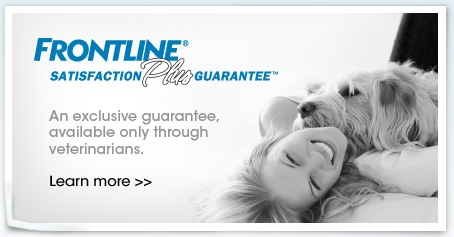 Frontline provides excellent flea and tick prevention to our patients