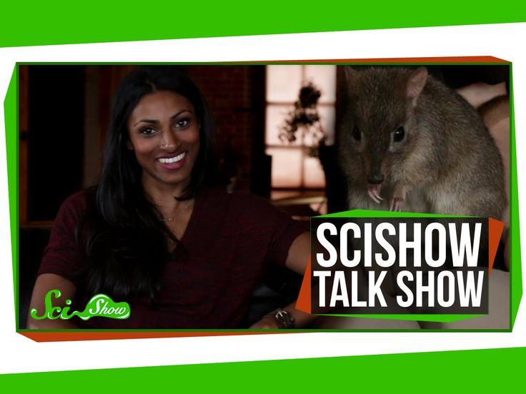 SciShow Talk Show: Crash Course Physics Host Dr. Shini Somara & Sydney t...