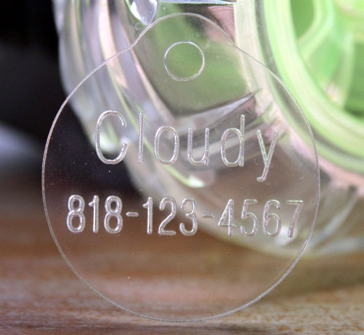 Clear Acrylic Cat Tag. This will be lightweight and blend into fur colour