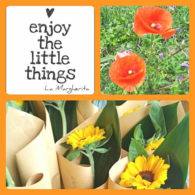 Enjoy the little things  La Margherita