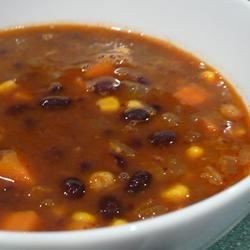 "Black Bean Vegetable Soup I ""Wonderful--I was not disappointed--my 13-yr-old son couldn't eat enough of it and said it was the best soup I ever made."""