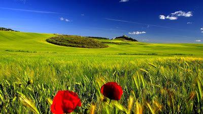 ✔ Los paisajes más hermosos del mundo (24 fotografías inéditas) | BANCO DE IMAGENES GRATIS ✔ Los paisajes más hermosos del mundo (24 fotografías inéditas)         |          BANCO DE IMAGENES GRATIS