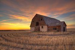 an old barn on stubble during sunset in saskatchewan